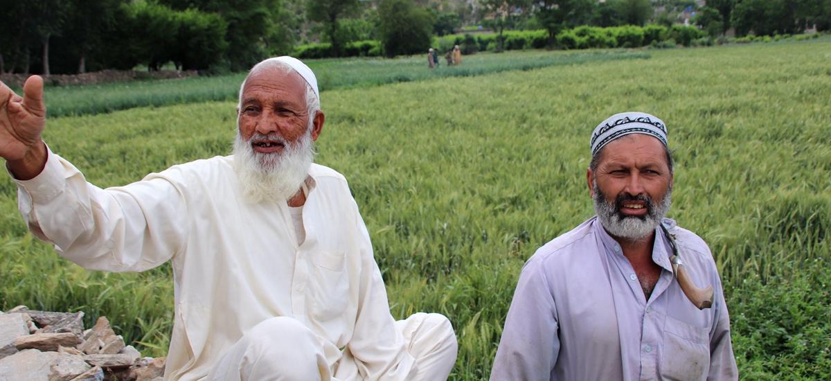 巴基斯坦史瓦特山谷-上君王佛塔