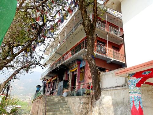 尼泊爾帕賓-綠度母道場