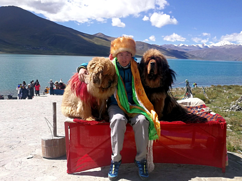 西藏布達拉宮+藏傳佛教四大教派+神山聖湖11日